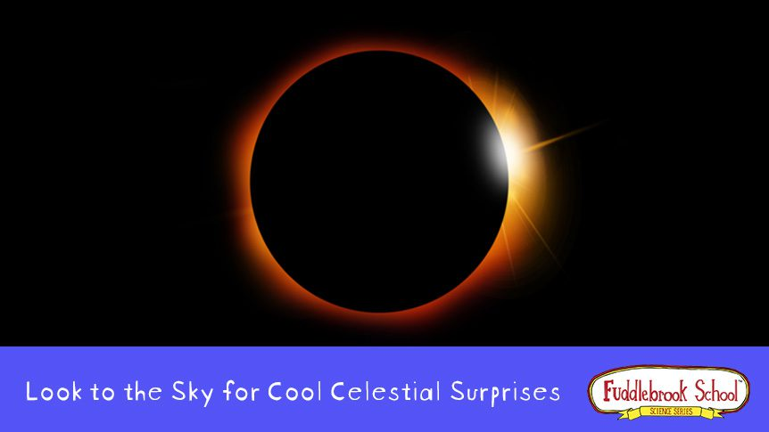 Look to the Sky For Celestial Surprises - Solar Eclipse
