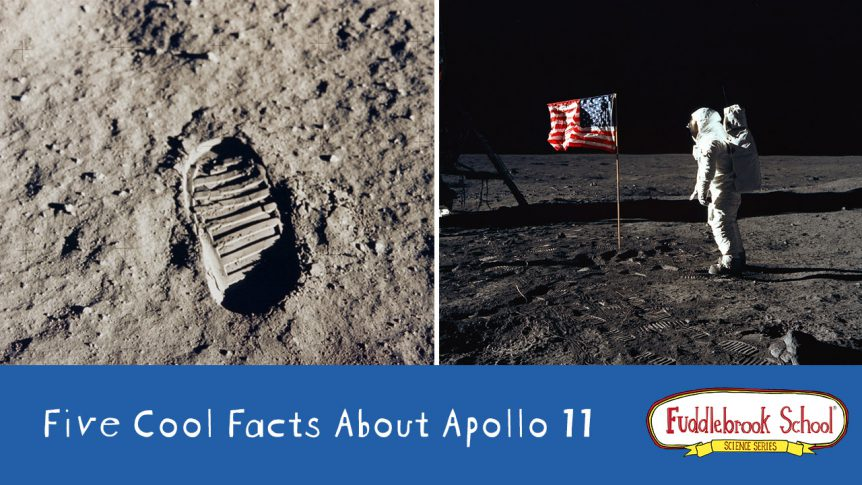 Five Cool Facts About Apollo 11: Fuddlebrook School ...
